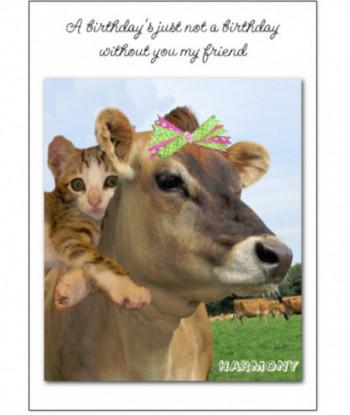 Friend Card Harmony