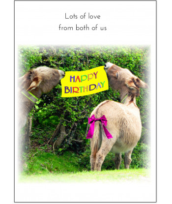 Birthday Card Donkey SYL