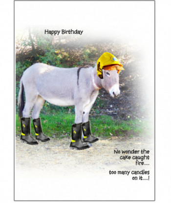 Birthday Card Donkey Kuthbert