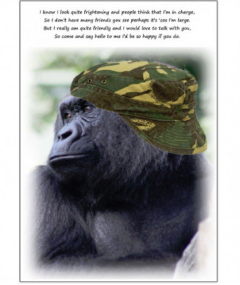 Birthday Card Gorilla Badongo