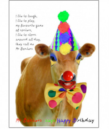 Birthday Card Mr Bonkers