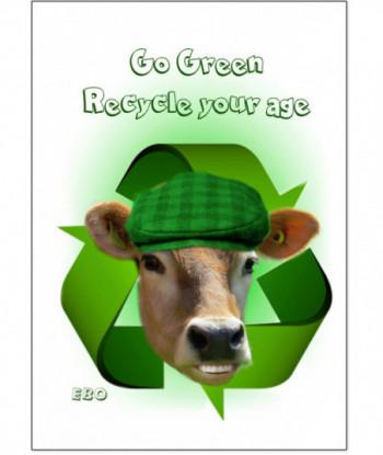 Birthday Card Recycle Ebo