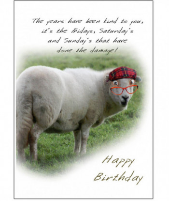 Birthday Card Sheep