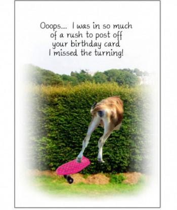 Birthday Cow Card OIWR