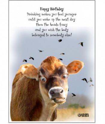 Birthday Cow Card Ouzi