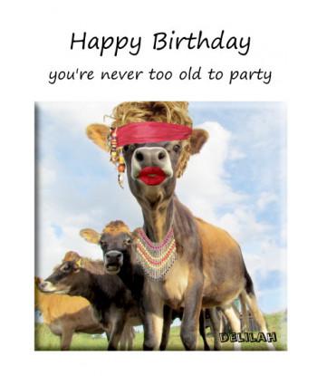 Birthday Cow Card Delilah