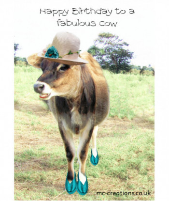 Birthday Cow Card Fabulous