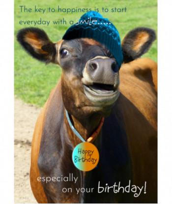 Birthday Cow Card Smile