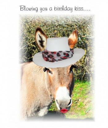 Donkey Birthday Card ABK