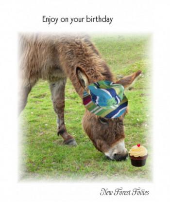 Donkey Birthday Card HH1