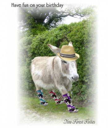 Donkey Birthday Card NN1
