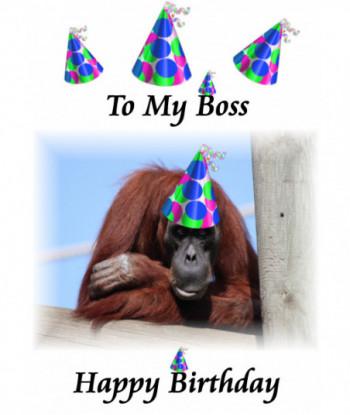 Birthday Card TMB3