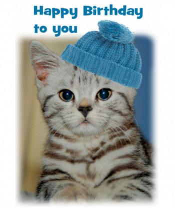 Birthday Cat Card HB1