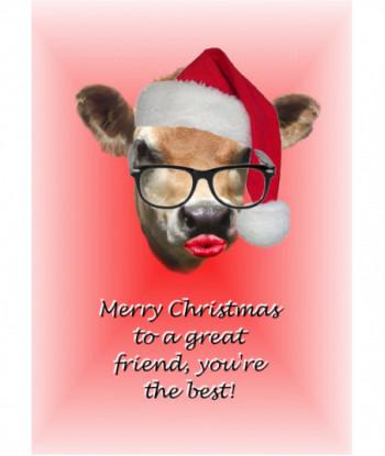 Christmas Card Friend TAG