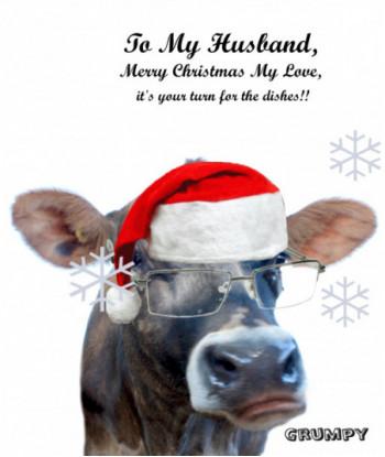 Christmas Card Grumpy