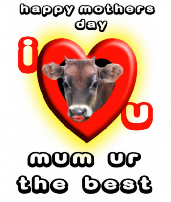 Mother's Day Card HMI01