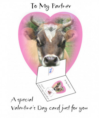 Valentine's Day Card Partner