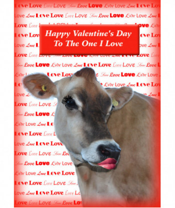 Valentine's Day Card VC1