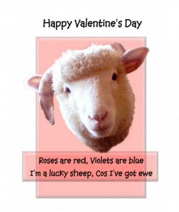 Valentine's Day Card VC4