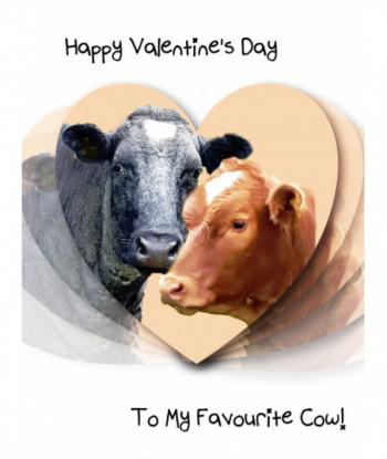 Valentine's Day Card VC5