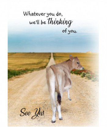 Leaving Card Jersey Cow SY2