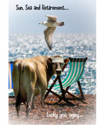 Retirement Cow Card ETV1