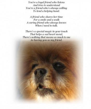 Friendship Card Dog