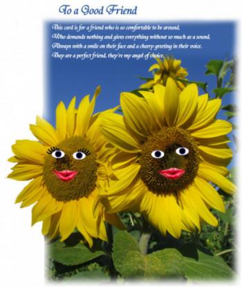 Friendship Card Sunflower WD1