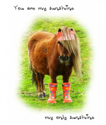 Donkey Card FF1