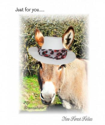 Donkey Card PB1