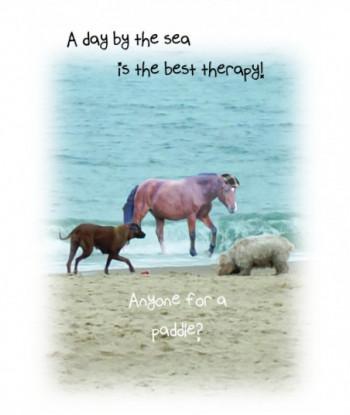 Horse Card ADBT