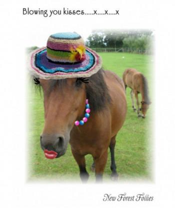 Horse Card BB1