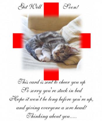Get Well Card Cat TCI1