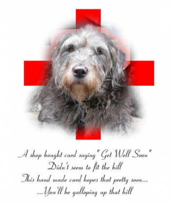 Get Well Card Dog ASB01