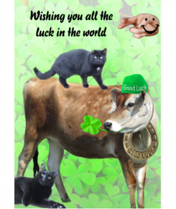 Good Luck Cow and Cat Card GL1