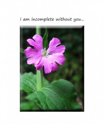 Inspirational Card IA1