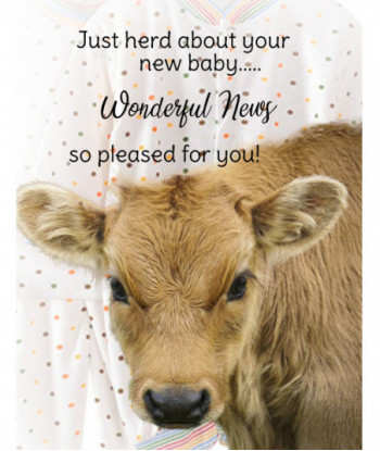New Baby Card Jersey Cow CM1