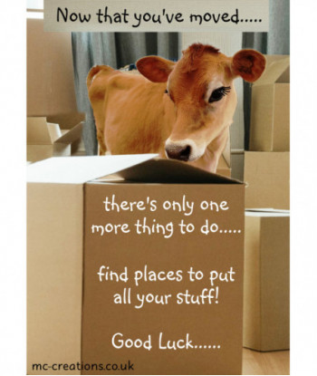 New Home Card Cow