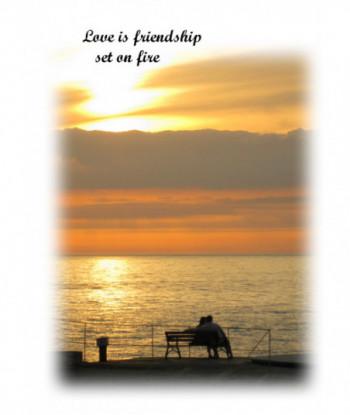 Partner Card LIF01