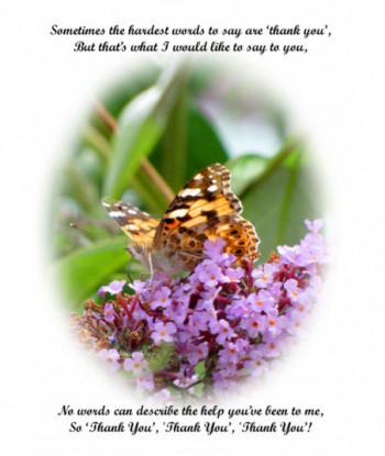 Thank You Card Butterflu ST01