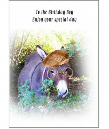 Birthday Card Donkey GFJ3