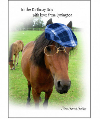 Birthday Card Horse BB2