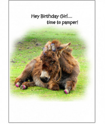 Birthday Card Donkey TT1