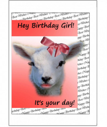 Birthday Card Sheep BG3