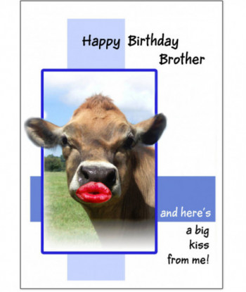 Family Card Brother HBB