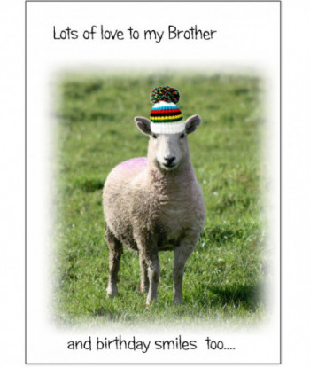 Family Card Brother LOL