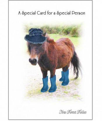 Birthday Card Donkey DF1